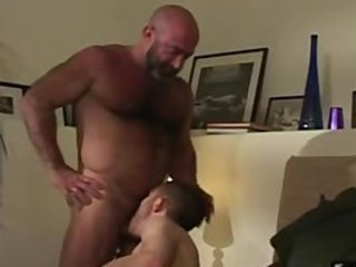 Bald mature hairy bear has fun with horny cub / 2753
