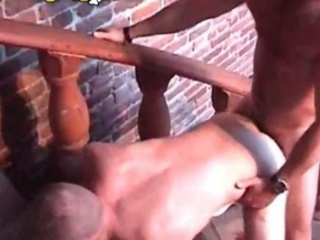Hairy Bear Pounding Ass / 6