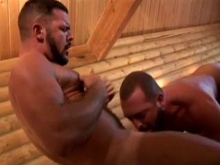 Hairy bears threesome / 121