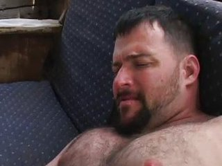 Horny daddy bears / 7343
