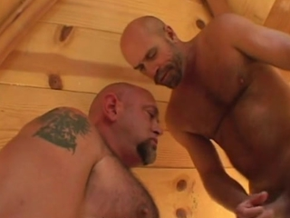 Muscle Bear Sauna Heat / 177