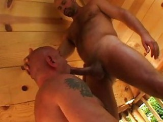 Strong gay bear gives blowjob to his mature lover / 761