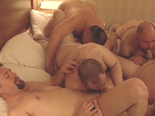 Amazing Bears Orgy / 802