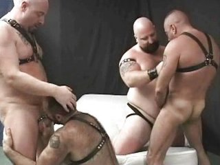 Hot Gay Bear Foursome Sex / 132