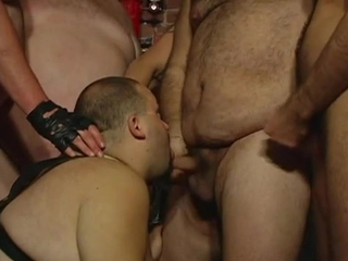 Bear Orgy Party / 241