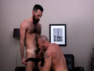 Gay bears cock suck rimming / 178